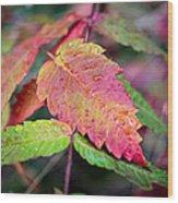 Wonder Leaf Wood Print