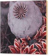 Wonderworld Of Flowers Wood Print