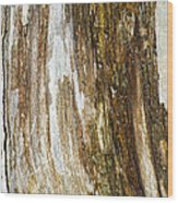 Wood Abstract Wood Print