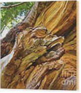 Wood Creature Wood Print by John Malone