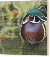 Wood Duck Be Still Wood Print