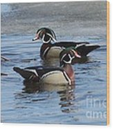 Wood Duck Drake Pair Wood Print