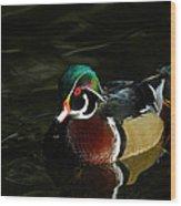 Wood Duck Drip Wood Print
