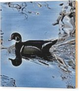 Wood Duck In Motion Wood Print