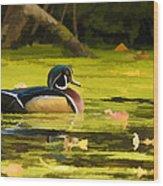 Wood Duck On Pond    Wood Print