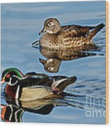 Wood Duck Pair Swimming Wood Print