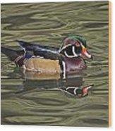 Wood Duck Wade Reflection Beauty Wood Print