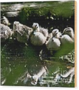 Wood Ducklings On A Log Wood Print