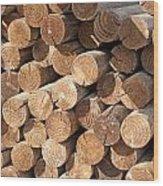 Wood Logs Wood Print