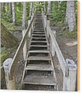 Wood Staircase In Hiking Trail Wood Print