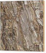 Wood Textures 4 Wood Print