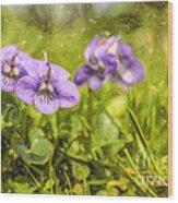 Wood Violet Wood Print