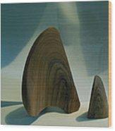 Wood Zen Harmony Wood Print