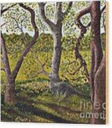 Wooded Glade Wood Print