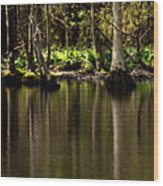 Wooded Reflection Wood Print
