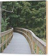 Wooded Walkway Wood Print