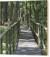 Wooden Boardwalk Through The Forest Wood Print