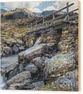 Wooden Bridge Wood Print by Adrian Evans