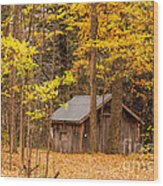 Wooden Cabin In Autumn Wood Print