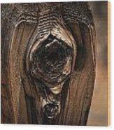 Wooden Eye Wood Print