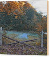 Wooden Fence In Autumn Wood Print