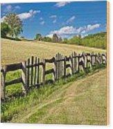 Wooden Fence In Green Landscape Wood Print