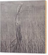 Wooden Fence Post On A Foggy Winter Day Wood Print