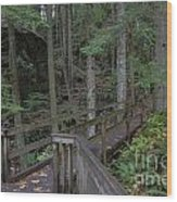 Wooden Forest Trail  Wood Print