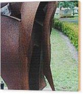 Wooden Horse5 Wood Print