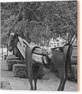 Wooden Horse6 Wood Print