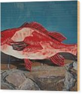 Wooden Red Snapper Wood Print