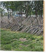 Wooden Spiked Fence Wood Print