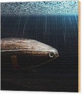 Wooden Submarine Ictineo II Dv Wood Print