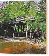 Wooden Suspension Bridge Wood Print
