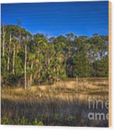 Woodland And Marsh Wood Print by Marvin Spates