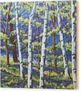 Woodland Birches Wood Print