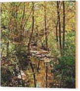 Woodland Brook  Wood Print