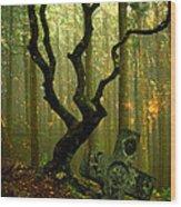 Woodland Burial Wood Print