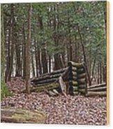 Woodland Cabin Ruins Wood Print