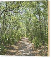 Woodland Path Wood Print by Glennis Siverson