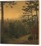 Woodland Pond Wood Print
