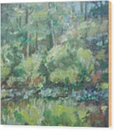 Woodland Pond Wood Print