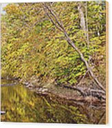 Woodland Stream Early Autumn Montgomery County Pennsylvania Wood Print