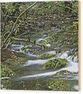 Woodland Stream - Monk's Dale Wood Print