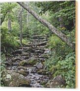 Woodland Streambed Wood Print
