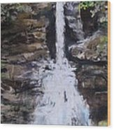 Woodland Waterfall Wood Print by Jack Skinner