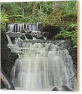 Woodland Waterfall Wood Print