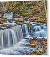 Wateralls In The Woods Wood Print