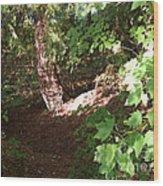 Woodlands Wood Print