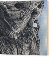 Woodman Wood Print by Petros Yiannakas